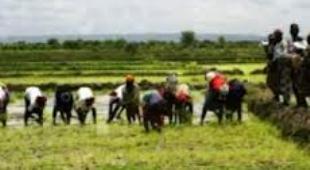 Après avoir annoncé l'équipement du monde rural pour développer l'agriculture, Pape Abdoulaye Seck en tournée du 11 au 15 avril