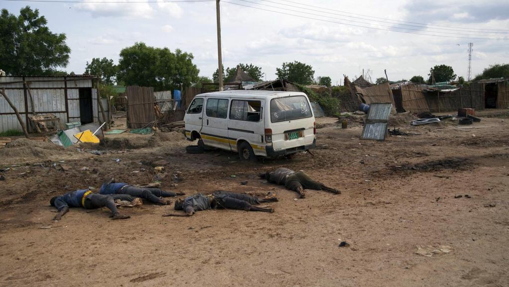 Des cadavres de civils jonchent les bords d'une route de Bentiu, au Soudan du Sud, le 20 avril 2014.