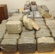 Soumbédioune: Une demi-tonne de cannabis et deux cargaisons de bois de coupe saisis par la Section de Recherches