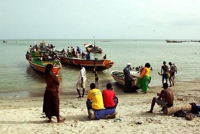 L'Afrique perd 20 milliards de dollars par an sur la pêche et l'exploitation forestière