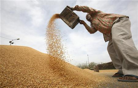 Conditions météo difficiles et tensions politiques, de mauvais engrais pour les céréales