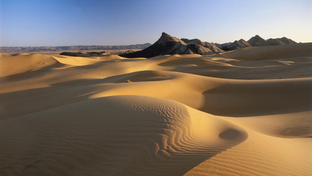 Des dizaines de candidats à l'immigration clandestine ont disparu dans le désert entre le Niger et l'Algérie. Getty Images/ Frans Lemmens