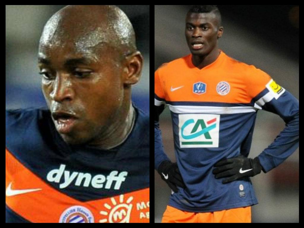 Montpellier : Courbis ne veut plus de Mbaye Niang, ni de Souleymane Camara