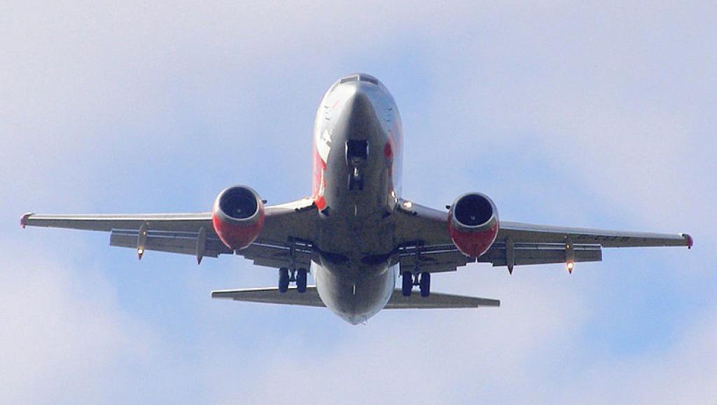 L'Etat malien vient de se porter acquéreur d'un Boeing 737 du même modèle que celui sur la photo. Wikimedia