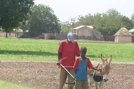 Locales : la faim, le principal adversaire du président Sall dans le monde rural, alerte le Forum civil