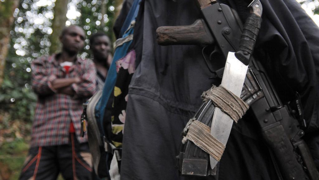 Les armes d'un rebelle hutu rwandais des FDLR dans la forêt autour de Pinga, à 150 km au nord-ouest de Goma, en février 2009. AFP PHOTO/ LIONEL HEALING