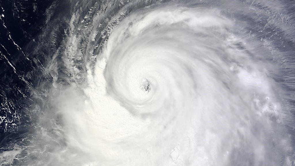 Des images satellite montrent le typhon Neoguri dans l'océan Pacifique remontant vers le Japon, le 6 juillet 2014.