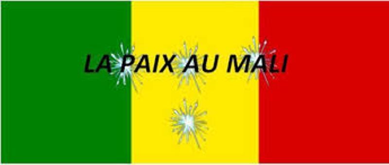 «Quelles constructions politiques dans la zone sahélo-saharienne ? » : Pour un processus de paix cohérent et efficient au Mali