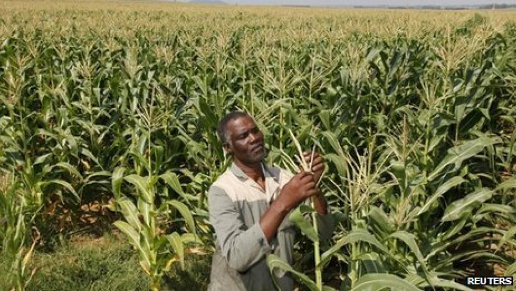 Le Ghana possède la 2e économie d'Afrique de l'Ouest. Reuters
