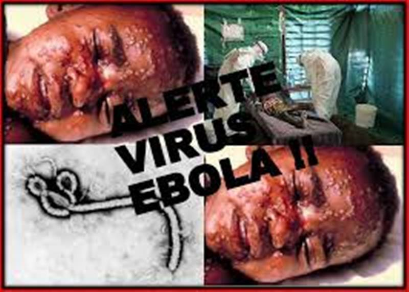 LIVETWEET- Ebola: Suivre l'évolution de l'épidémie à la minute