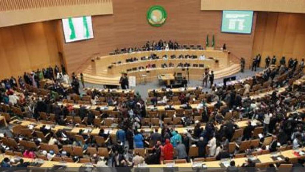 Ebola: l'action de l'Union africaine jugée très insuffisante