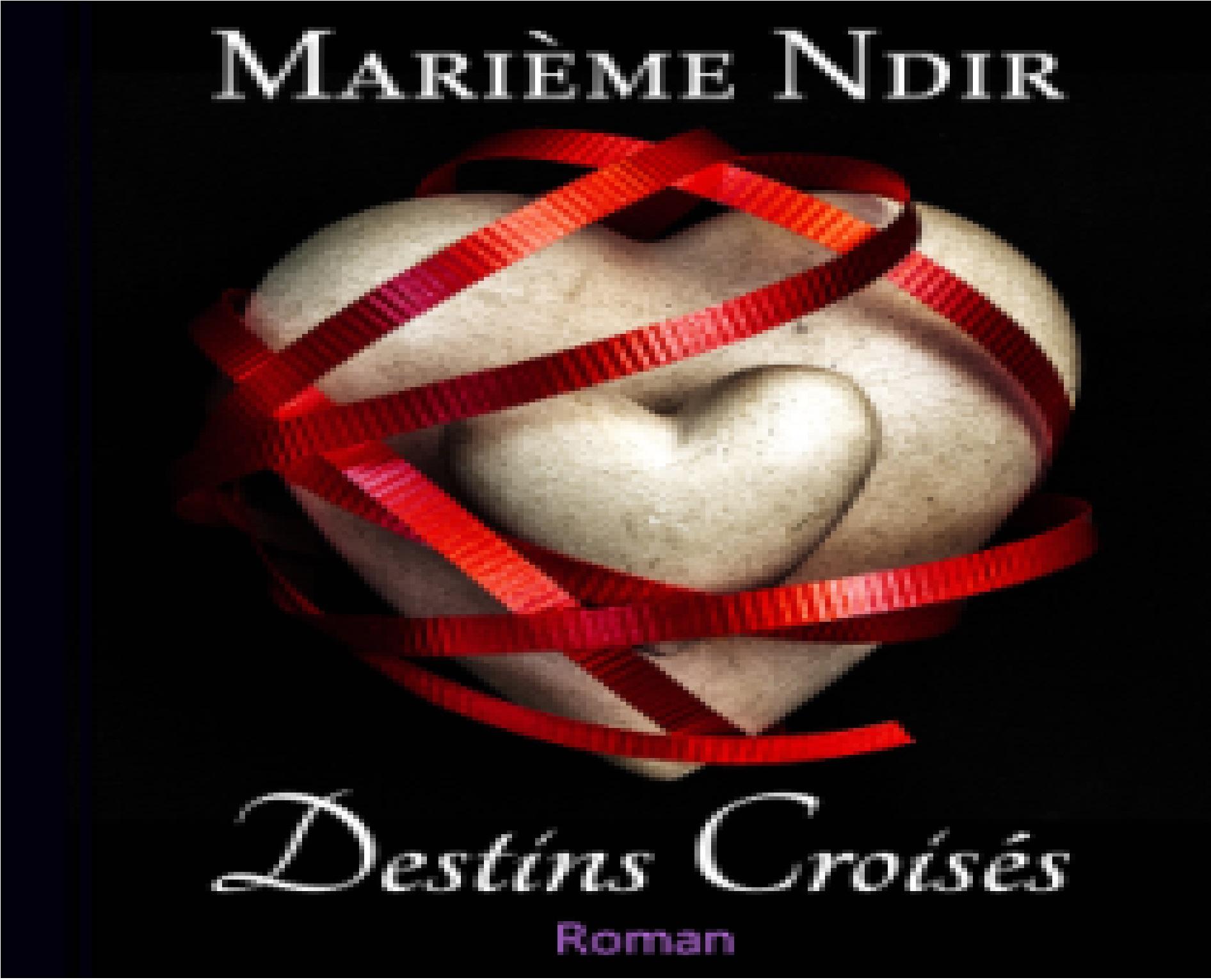 Parution : « Destins Croisés », le rythme d'un amour qui ne vous laisse pas respirer...