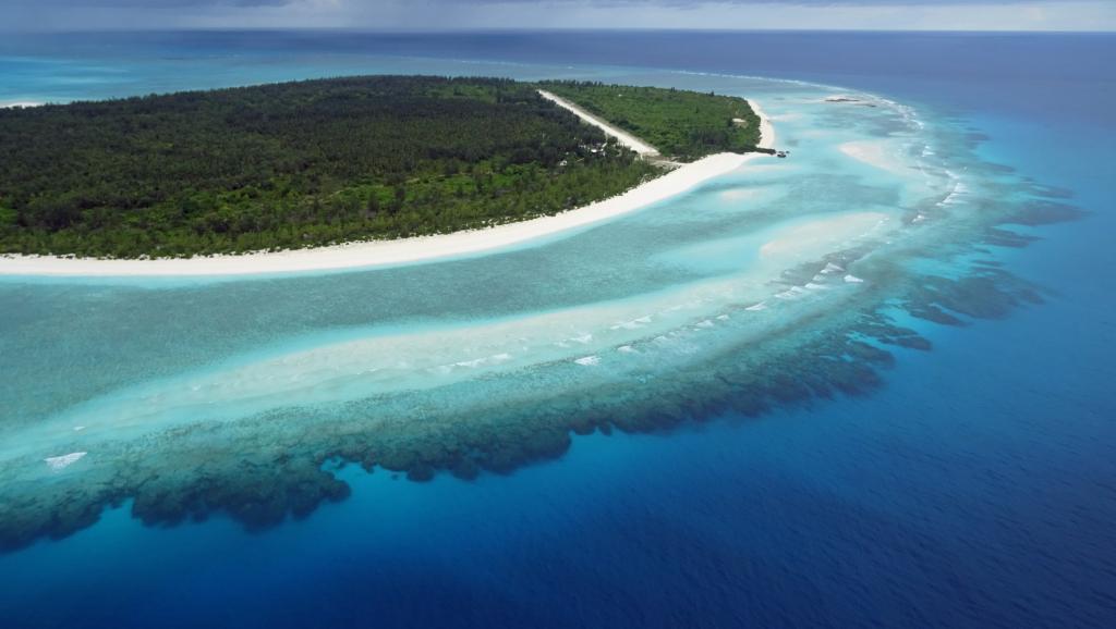 Juan de Nova, l'une des cinq îles Eparses françaises, située dans le canal du Mozambique, est un hâvre de biodiversité, préservé de la prédation et de la pollution humaine... pour l'instant. AFP PHOTO / SOPHIE LAUTIER