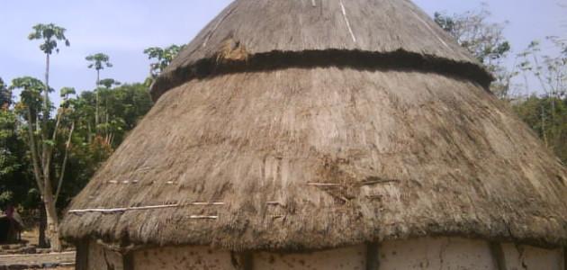 N'zénié, un village où Ebola ferait des ravages dans l'ignorance suspecte des autorités