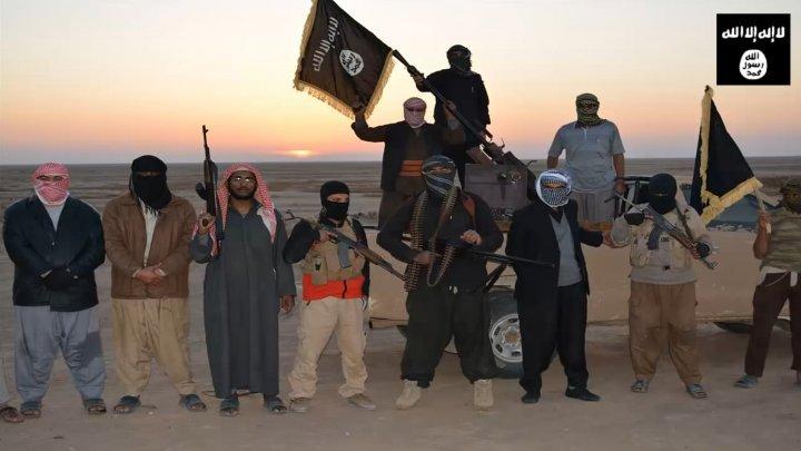 """""""Jihad 2.0"""" : Google ou Facebook sont-ils impuissants ?"""