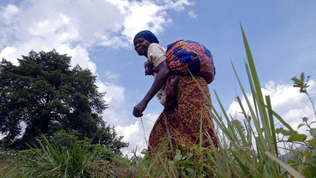 Dans la région de Beni, au Nord-Kivu, les habitants vivent dans la crainte d'être enlevés ou tués par les ADF-Nalu depuis des années. AFP PHOTO / LIONEL HEALING