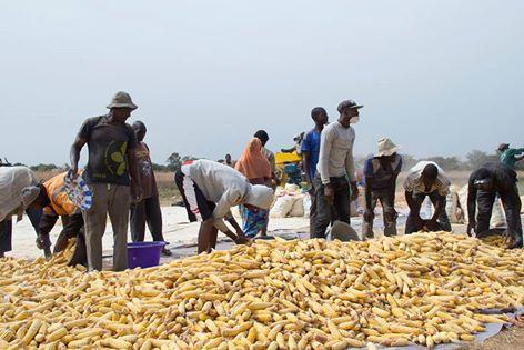 Rétro 2014 - Agriculture et crise Alimentaire : le faussé se creuse dans le monde rural