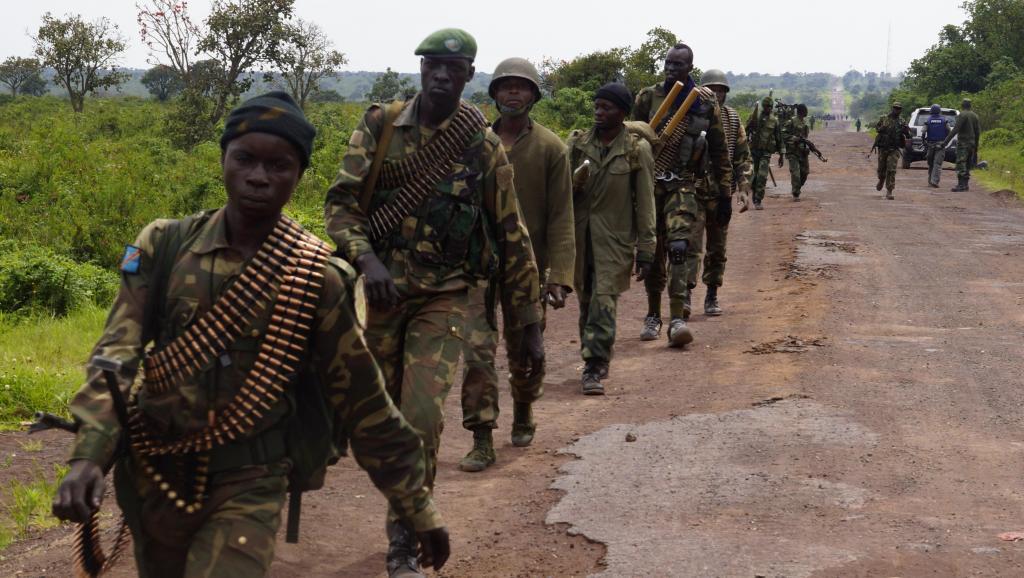 RDC: l'armée congolaise annonce partir seule «anéantir les FDLR»