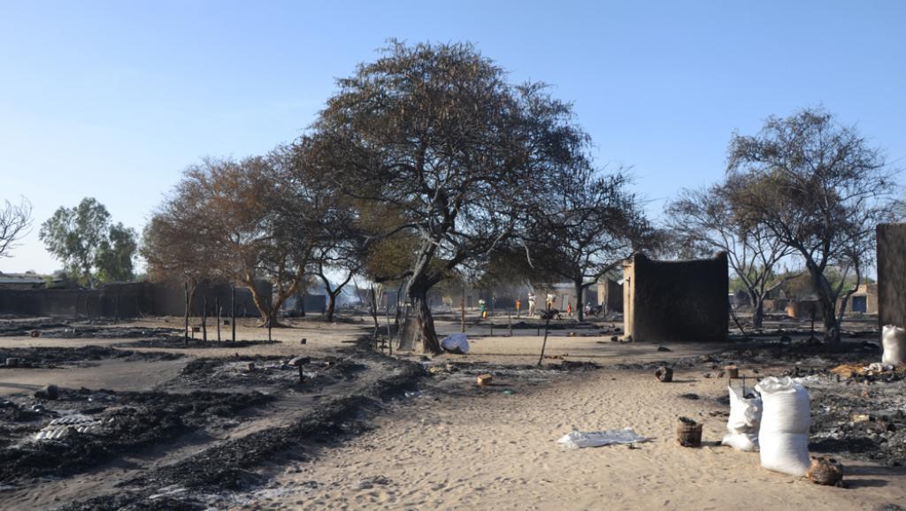 Ce qu'il reste d'une maison brûlée, à Ngouboua, après l'assaut des islamistes de Boko Haram.