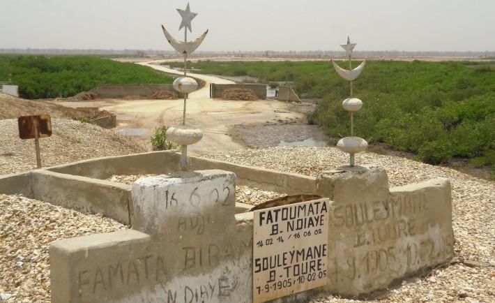 Dégâts collatéraux du Chantier de l'AIBD, des corps déplacés du cimetière de Mbadatt
