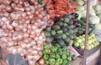 Sud-ouest ivoirien: Les légumes les plus chers du district sont vendus à Sassandra (ocpv)