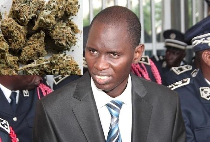 Mame Seydou Ndour, Directeur Ocrtis