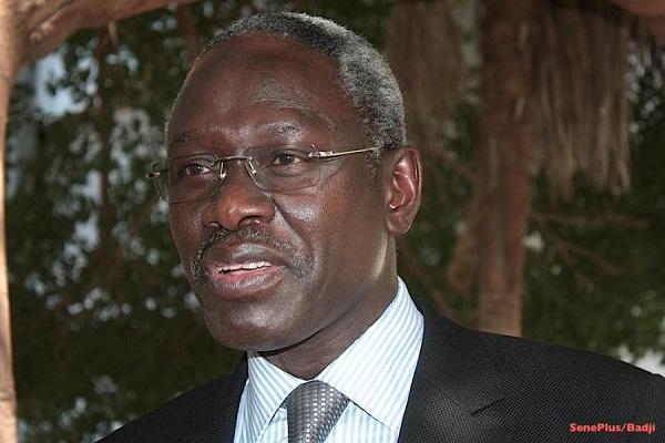 Habib Sy : Abdoulaye Wade clignotait à gauche et tournait droite mais avec Macky … »