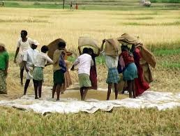 1400 tracteurs sur le marché pour une véritable révolution agricole au Sénégal (président Sall)