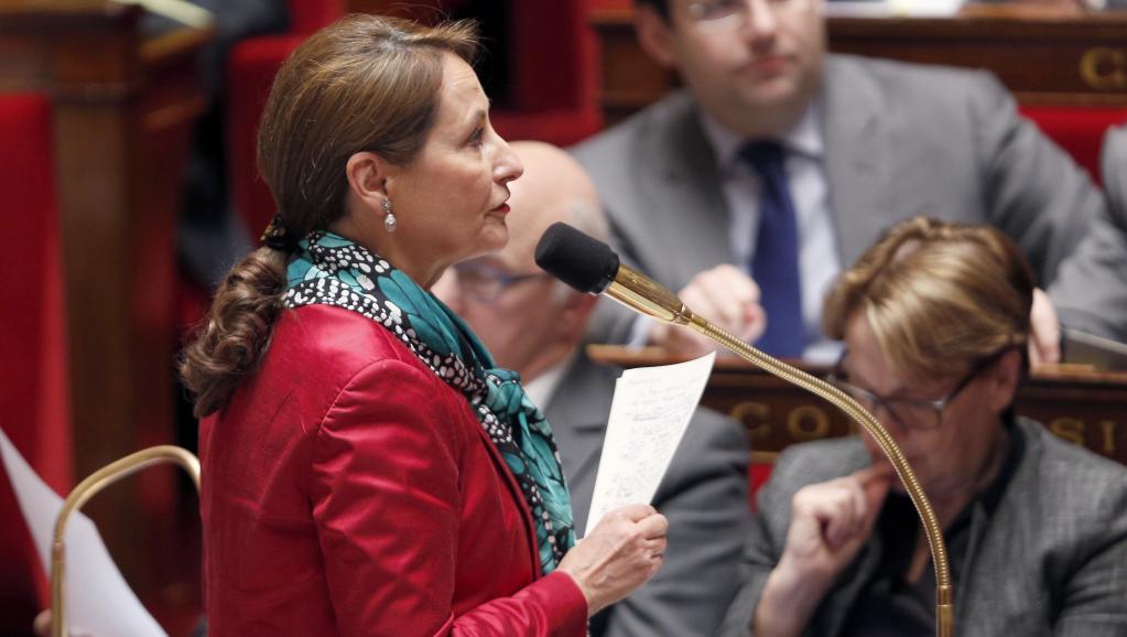 La ministre de l'Ecologie Ségolène Royal à l'Assemblée nationale française. AFP PHOTO / FRANCOIS GUILLOT