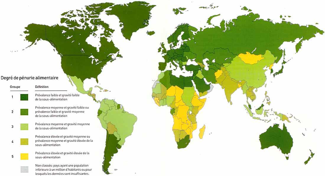 Rapport sur la sécurité alimentaire : 800 millions de personnes souffrent de faim dans le monde