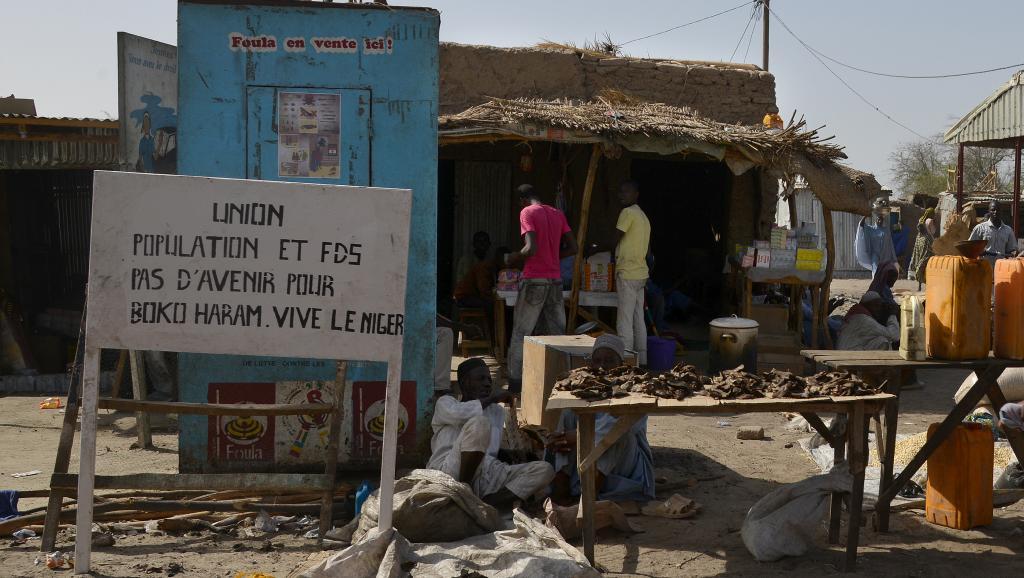 Les deux villages attaqués par Boko Haram sont situés dans la région de Diffa, non loin de la frontière avec le Nigeria. AFP PHOTO / ISSOUF SANOGO
