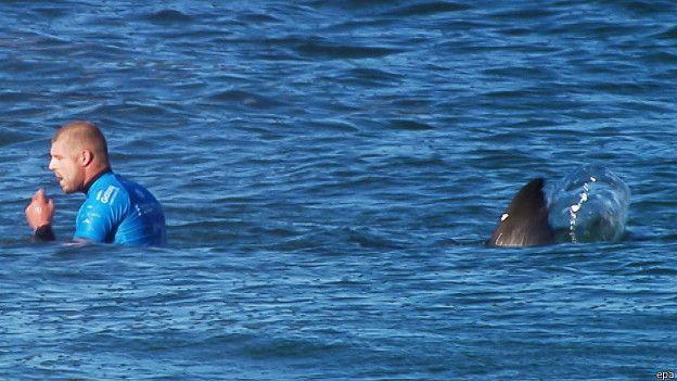 Le surfeur Mick Fanning attaqué par un requin