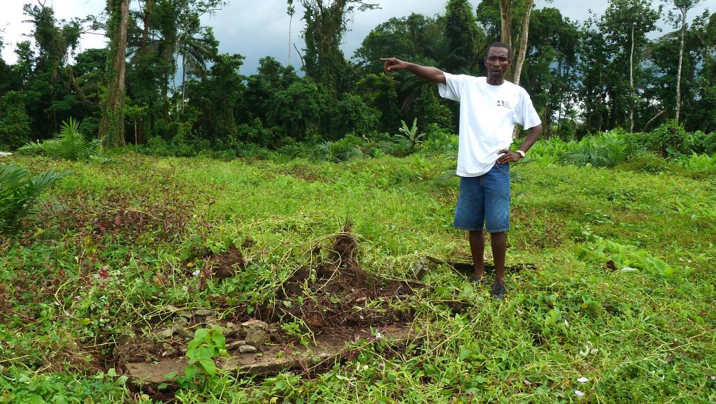 Benedict Smarts, un paysan libérien, en 2012, sur un ancien cimetière traditionnel auparavant installé dans la forêt exploité par Golden Veroleum pour la production d'huile de palme. AFP PHOTO / ANNE CHAON