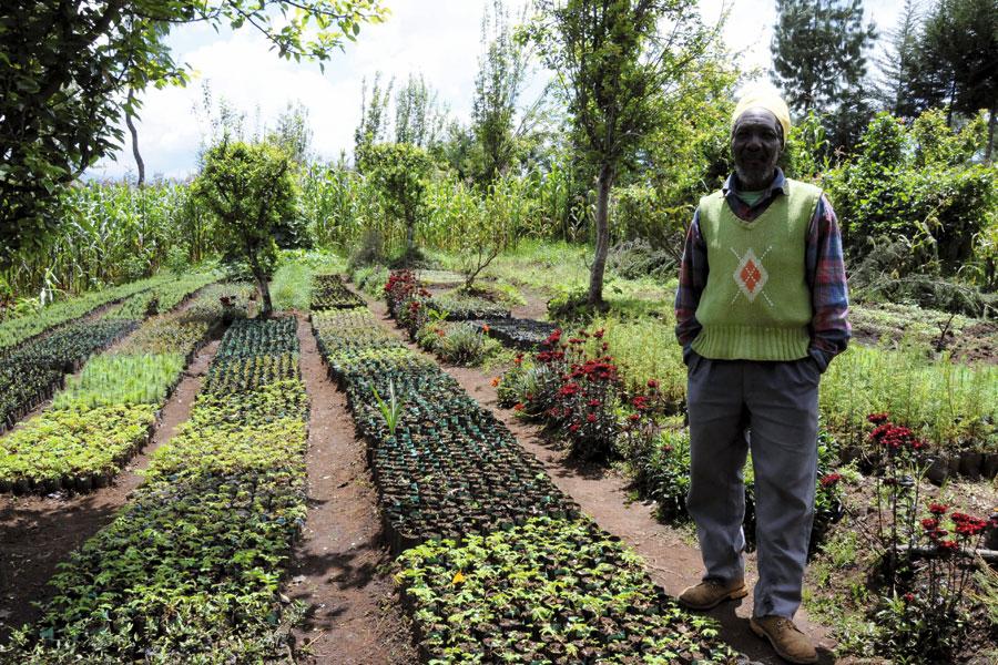 Développement durable : LA FAO récompense deux projets au Niger et au Sénégal