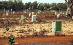 Foncier : Les populations de Tivaouane peulh accusent  Mbagnick Diop'' Souche'' de spoliation
