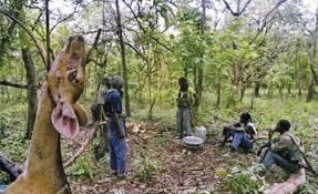 Mines anti personnel en Casamance: plus de 400 femmes amputées.