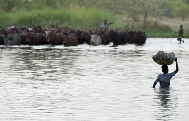 Tchad : 27 tués dans un triple attentat-suicide sur une île du lac Tchad