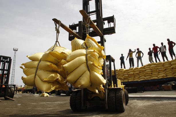 Sénégal : Le riz représente 70% du volume total des importations de céréales