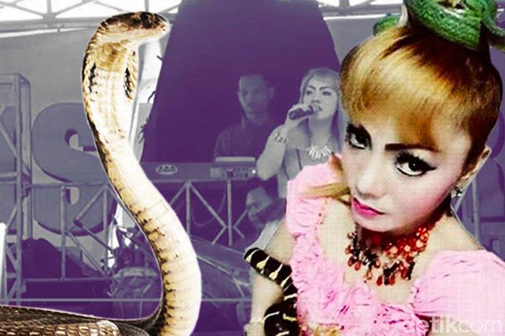 Mordue par un cobra, une chanteuse termine son concert avant de mourir