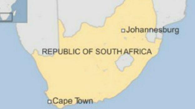 Afrique du Sud: Des singes sauvés
