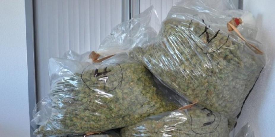 300 kg de drogue saisies, 3 personnes dont une femme arrêtées par l'OCRTIS