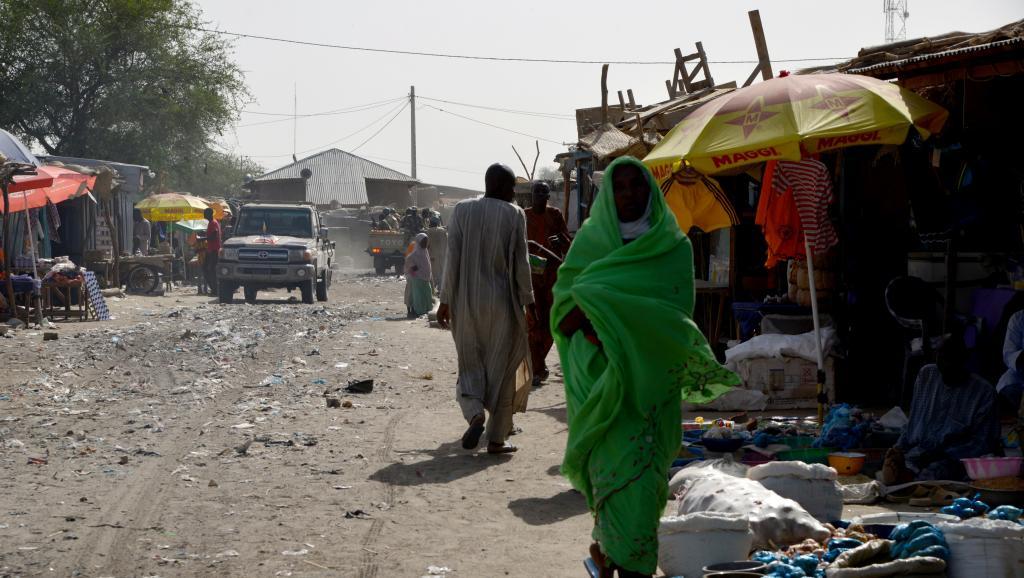 Niger: situation toujours précaire à Bosso après l'attaque de Boko Haram