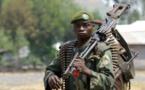 RDC : l'armée visée par une enquête