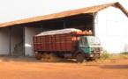 RCA: vers la relance de la culture du coton dans la région de Ouaka