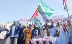 Sénégal - XXIe siècle : Des islamistes plaident pour un renouveau islamique