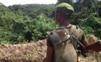 L'armée ougandaise réagit après la mort de 15 casques bleus en RDC