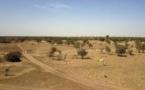 Attaque de Kouré au Niger: conseil de sécurité à Niamey, la traque des auteurs se poursuit