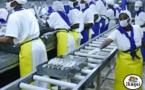 Chômage technique de plus de 11 mois: les travailleurs d'Ikagel Mbour envisagent de traîner la direction devant les tribunaux