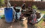Plaidoyer des organisations paysannes et de la société civile pour l'agroécologie au Sénégal
