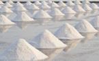 Fatick: une unité de raffinage de sel table sur 200 emplois directs